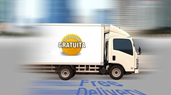 e-commerce spedizione gratuita